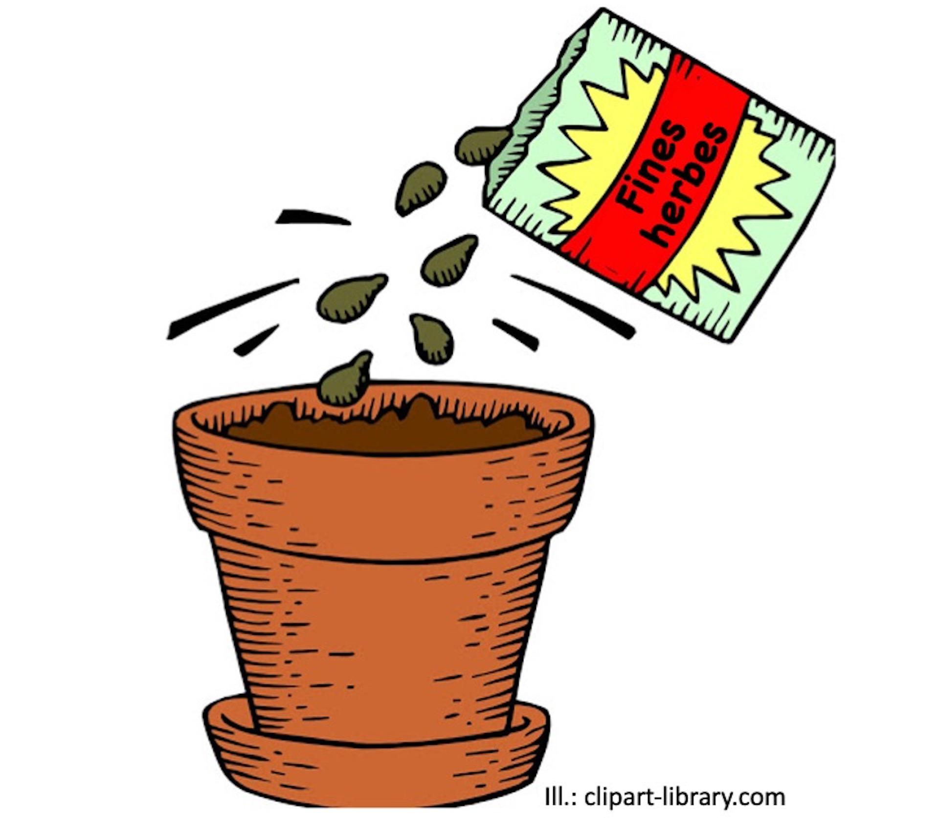 Illustration montrant un sachet de graines étiqueté fines herbes et des graines tombent du sachet dans un pot.