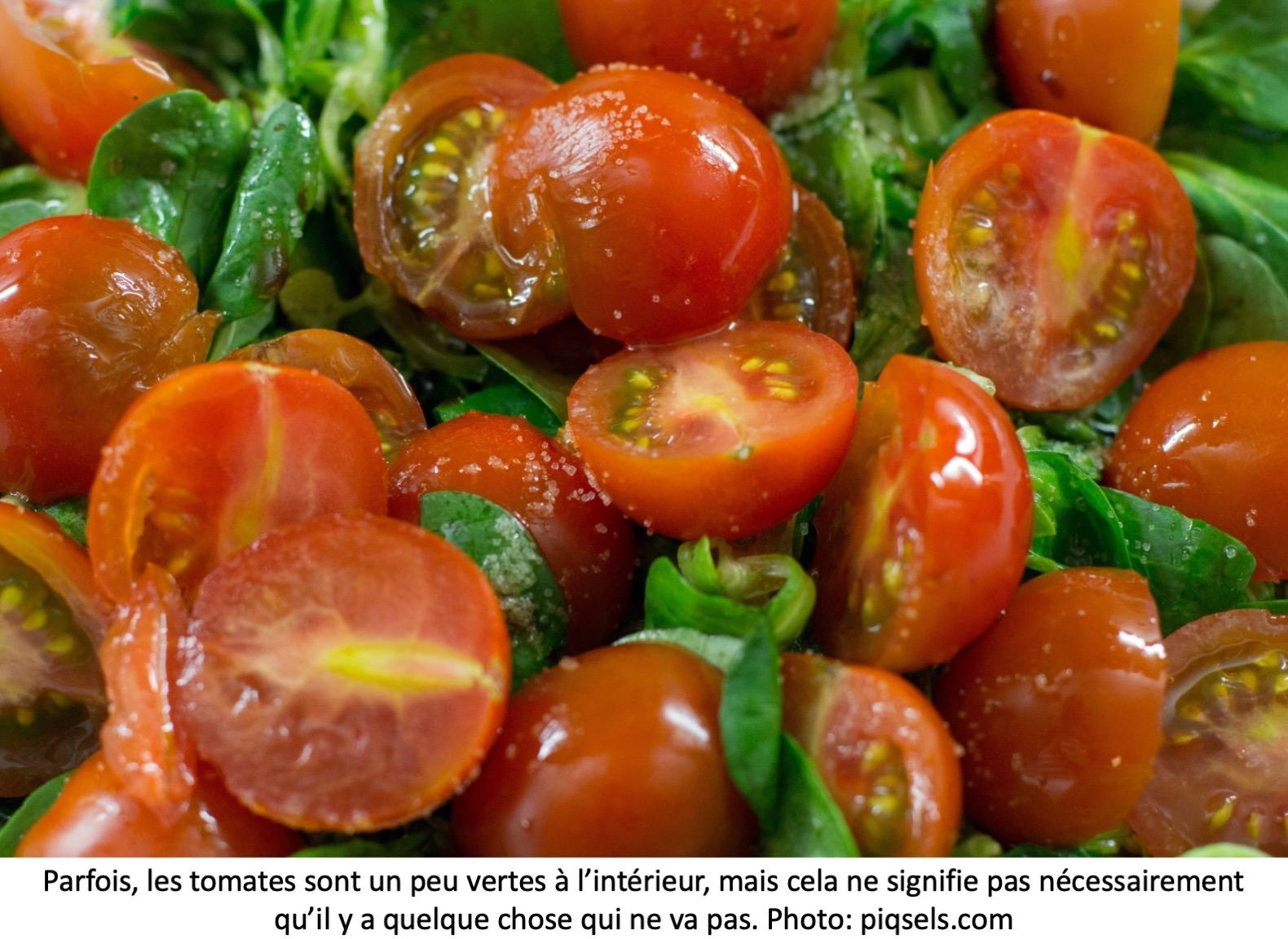 Tomates coupées en deux avec un peu de gel vert près des graines.
