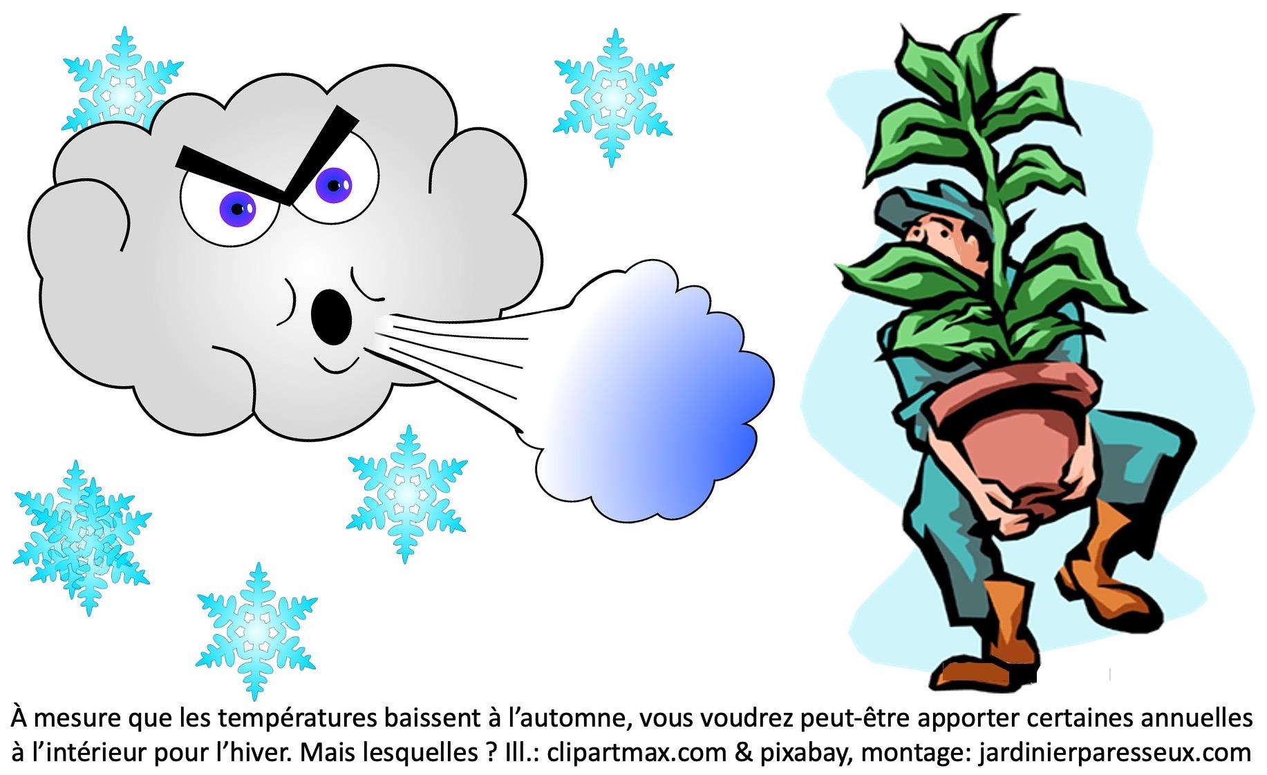 Vent froid qui force un homme à rentrer une plante.